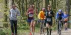 Logus- Hoop Marathon Zeeuws-Vlaanderen