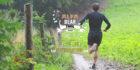 Alfa Bear Trail