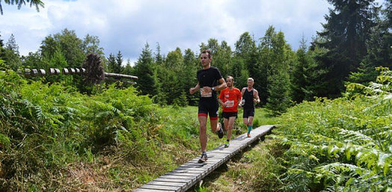 Trail du Dragon Baelen